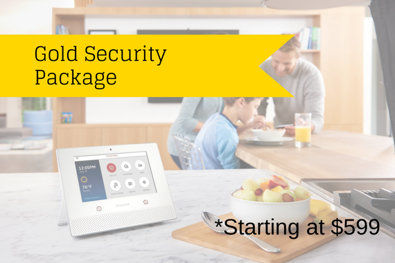Gold Security Package (starting at $599)